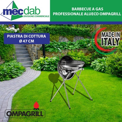 Barbecue a Gas GPL Alueco Professionale con Coperchio a Forno OMPAGRILL