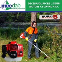 Decespugliatore Motore a Scoppio 2 Tempi Euro 5 - 1,25kW 42.7 CC Asta Ø 26mm