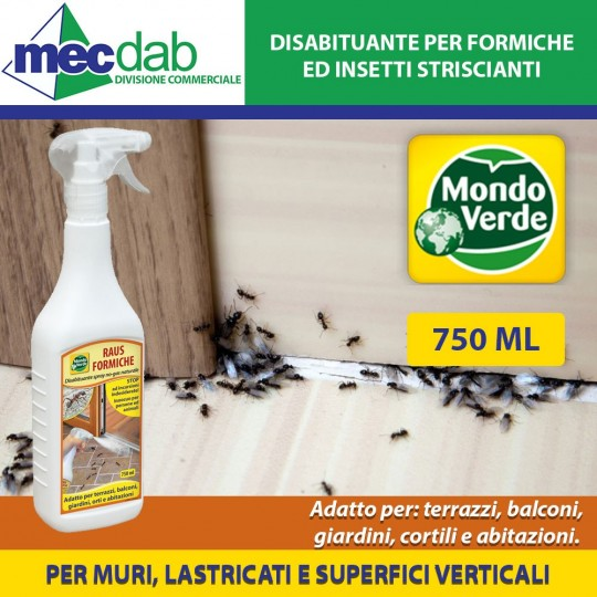 Spray Repellente Per Formiche Per Casa 750ML Raus Mondo Verde