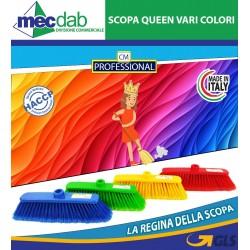 Scopa in Plastica con Setole Morbide per Interni Queen Vari Colori