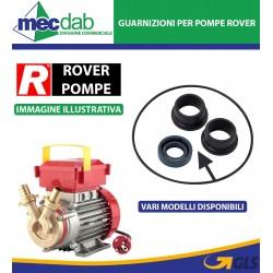 Kit Guarnizioni per Pompe Ed Elettropompe Rover Vari modelli Disponibili