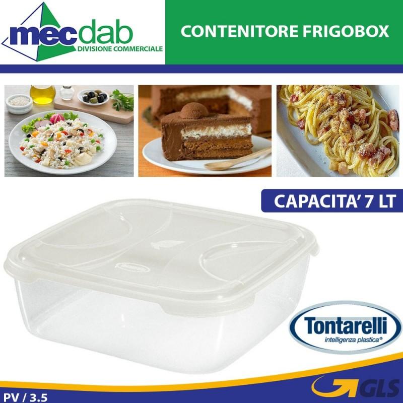 Frigobox Contenitore Per Alimenti Max 7LT Tontarelli Nuvola